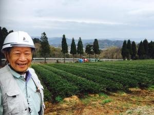 японский чай из префектуры Симанэ