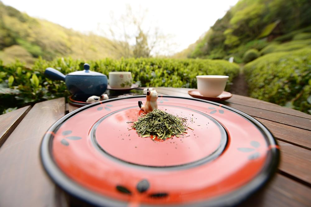 зелёный чай кариганэ