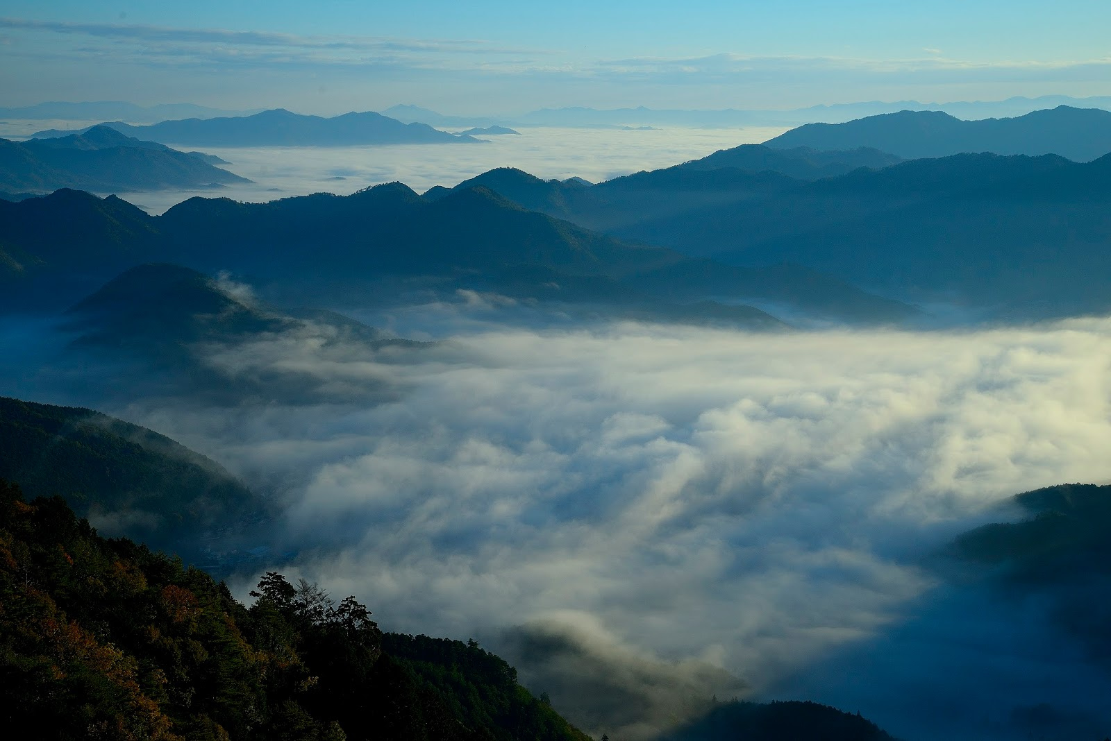 туман тамба