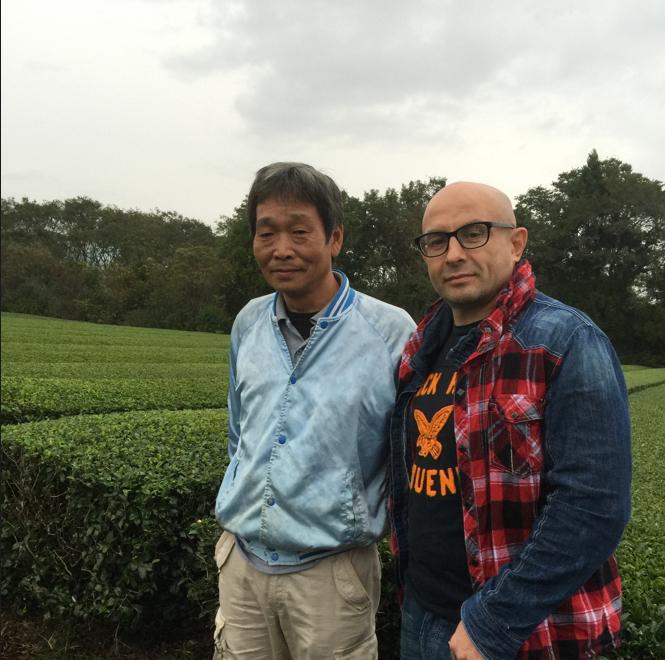 чай камача из Миядзаки