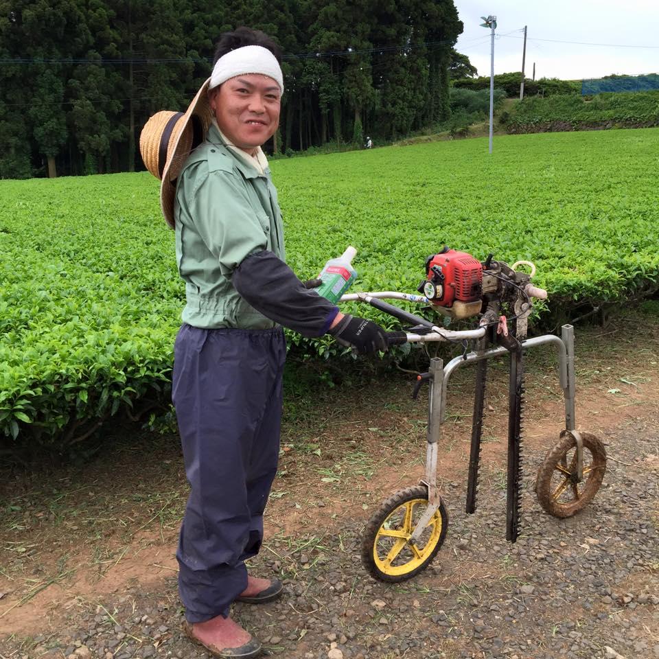 фермерский банча