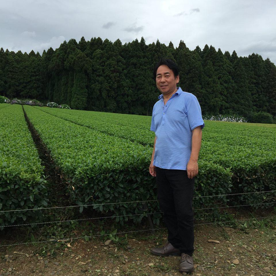 японский органический чай