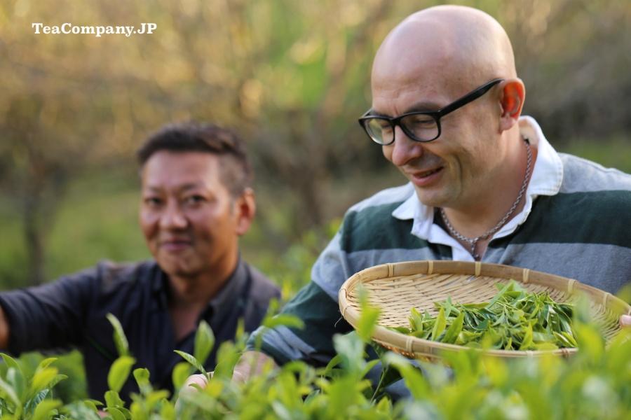 природный чай Ямато