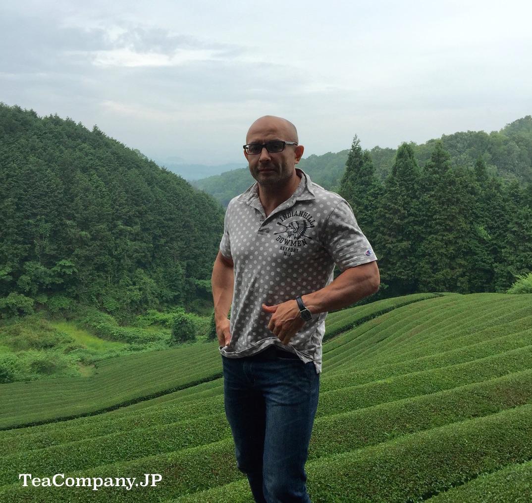 японский чай Вадзука